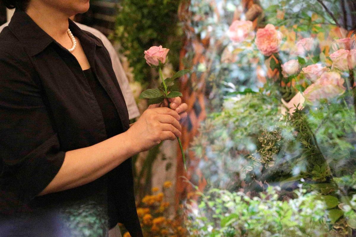 薄桃色の薔薇の花