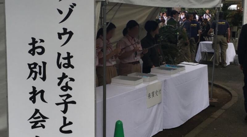 ゾウの「はな子」のお別れ会。東京・井の頭自然文化園で【行ってきました】
