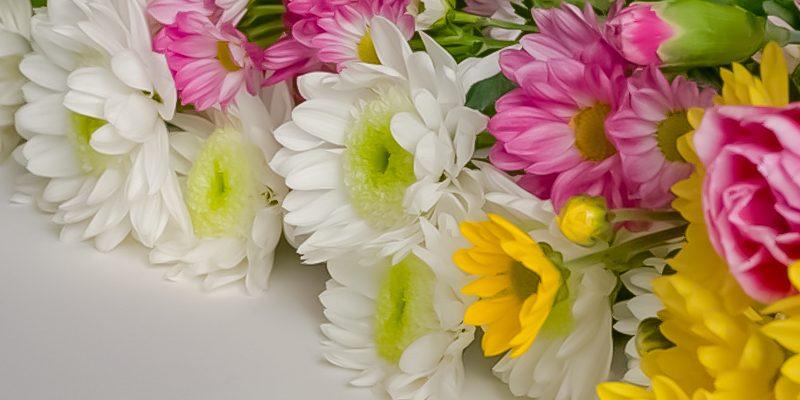 お別れ会での献花とは?当日の流れや供花との違いを解説